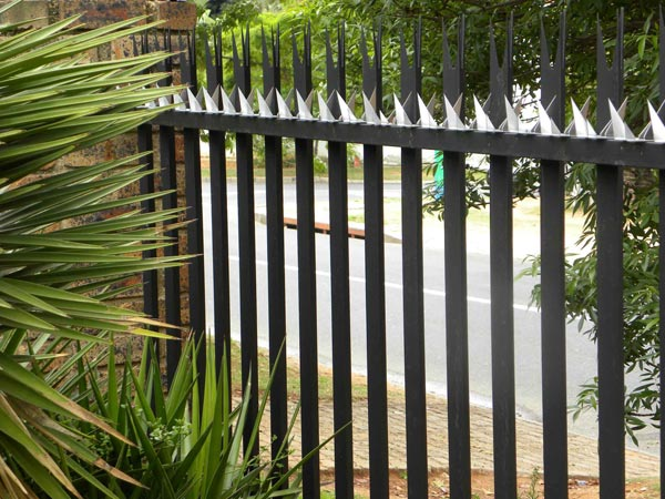 Stainless Steel Security Wall Spikes For Walls Amp Fences