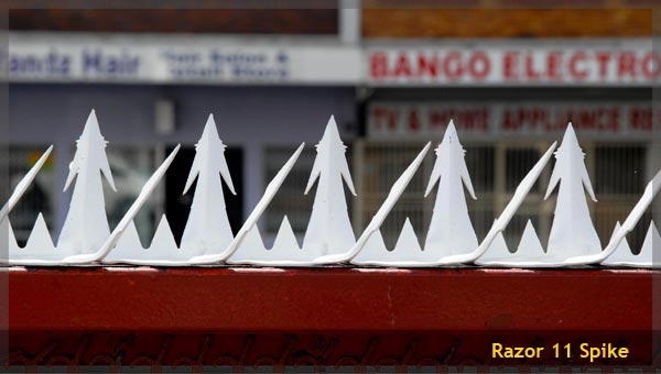 Security Wall Spikes Manufactured And Sold By Razor Spike
